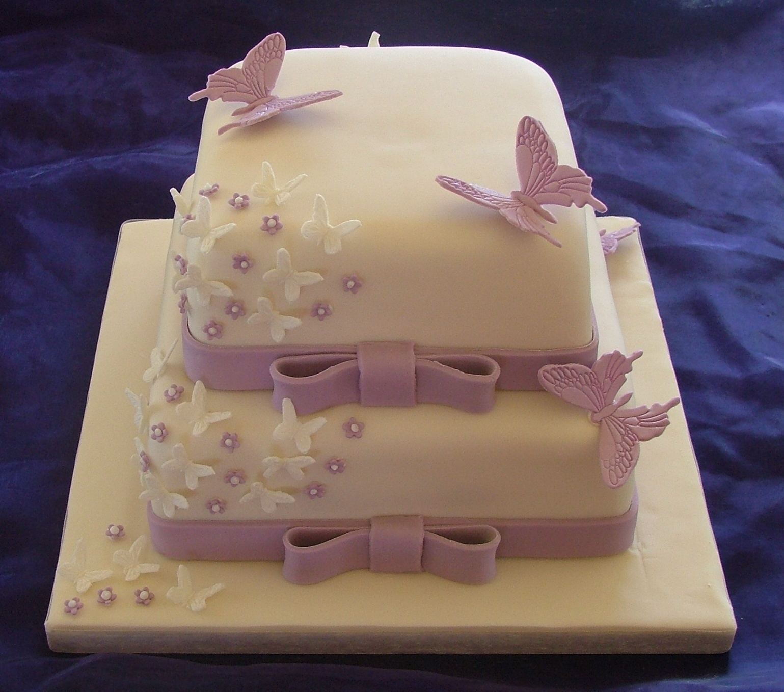 Two Tier Butterfly Cake