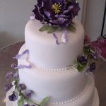 Purple peony 2